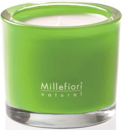 Millefiori Milano Green Fig & Iris