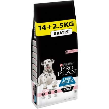 Сухой корм для собак PRO PLAN Adult Large Athletic, для крупных собак, лосось, 14 + 2,5кг