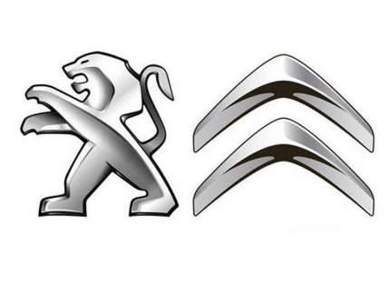 Колпачок ступицы колеса Peugeot-Citroen с эмблемой Citroen  542170