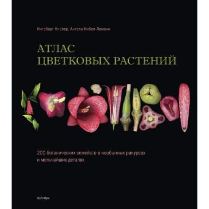 Книга Атлас Цветковых Растений