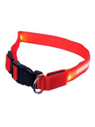 Ошейник для собак повседневный GMW LED светящийся, обхват шеи 30-55 см, нейлон, красный