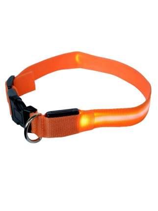 Ошейник для собак повседневный GMW LED светящийся, обхват шеи 30-55 см, нейлон, оранжевый