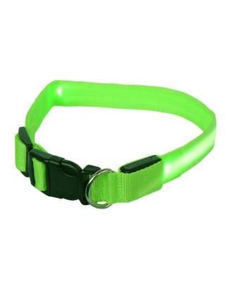 Ошейник для собак повседневный GMW LED светящийся, обхват шеи 30-55 см, нейлон, зеленый