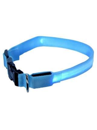 Ошейник для собак повседневный GMW LED светящийся, обхват шеи 30-55 см, нейлон, голубой