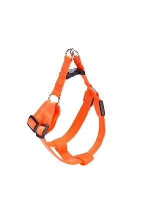 Шлейка для собак GMW  LED светящаяся, нейлон, оранжевый