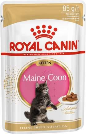 Влажный корм для котят ROYAL CANIN Kitten Maine Coon, мейн-кун, мясо в соусе, 12шт по 85г