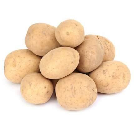 Картофель ранний 0,5 кг