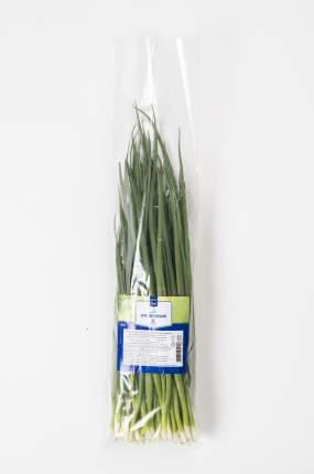 Лук зеленый Metro Chef свежий 0,25 кг