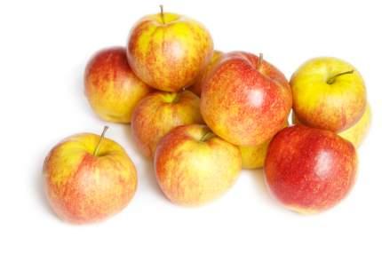 Яблоки сезонные 1,5 кг