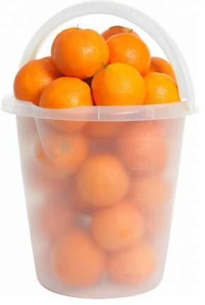 Апельсины в ведре 5 кг