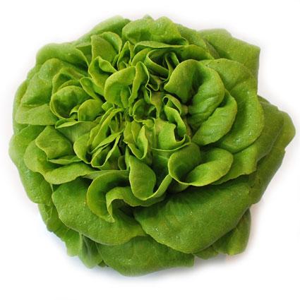 Салат Саланова Эксклюзив зеленый 0,1 кг
