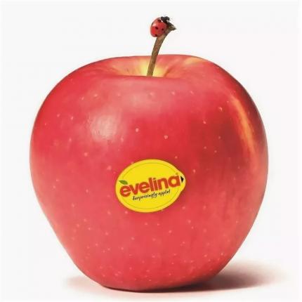 Яблоки Эвелина в лотке 800 г