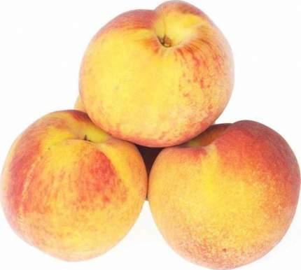 Персики с желтой мякотью 500 г