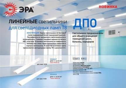 Настенно-потолочный светильник ЭРА ДПО 11-2х10-001 Б0048427