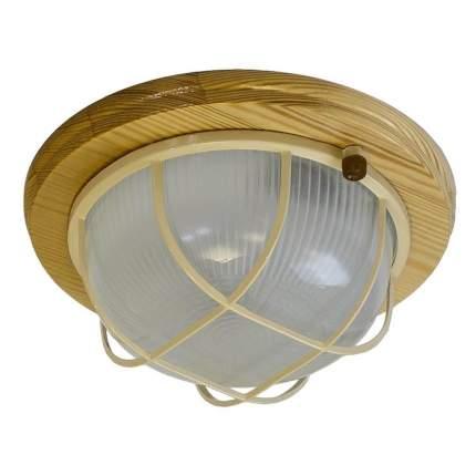 Светильник для ЖКХ ERA НБО 03-60-012
