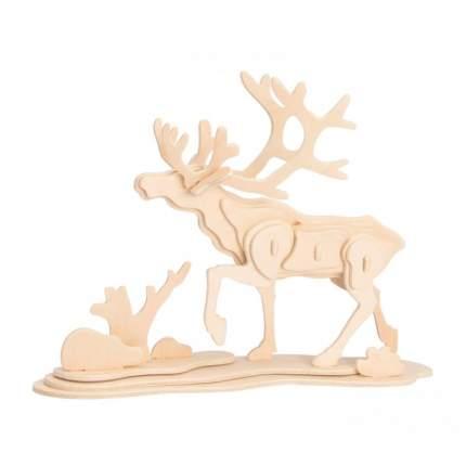 JP274 3D деревянный пазл Robotime Дикие животные - Лось