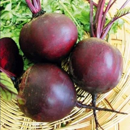 Семена овощей Поиск 470944 Свекла столовая Мулатка