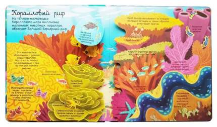 Книга Робинс Волшебные створки. Секреты морей и океанов