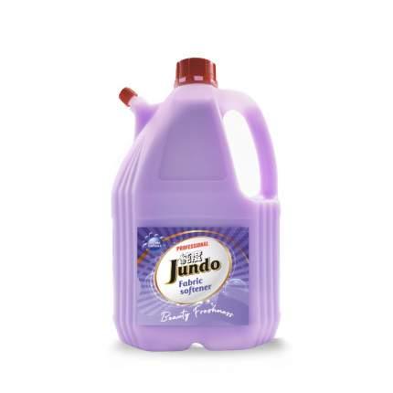 Концентрированный кондиционер для стирки белья Jundo «Beauty Freshnes» Aroma Capsule 4л