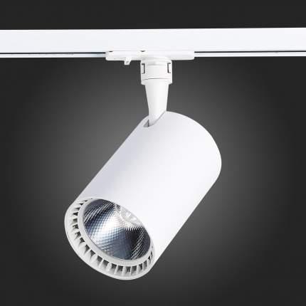 Трековый светодиодный светильник ST Luce Cami ST351.536.30.24