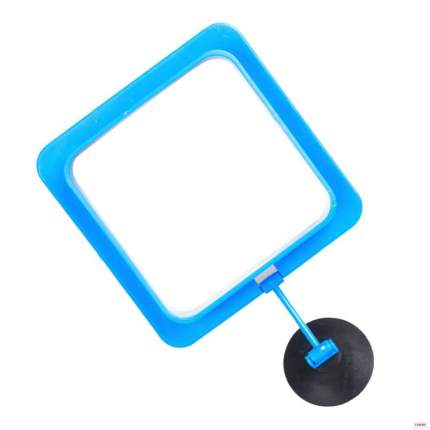 Кормушка для рыбок Naribo квадратная, пластиковая на присоске