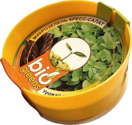 """Комплект """"Свежая зелень"""" (лоток для проращивания), семена кресс-салата в подарок"""
