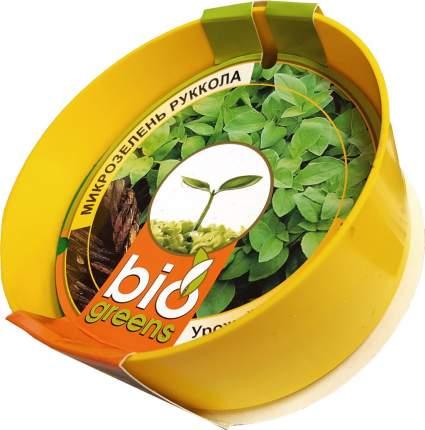 """Комплект """"Свежая зелень"""" (лоток для проращивания), семена руколы в подарок"""