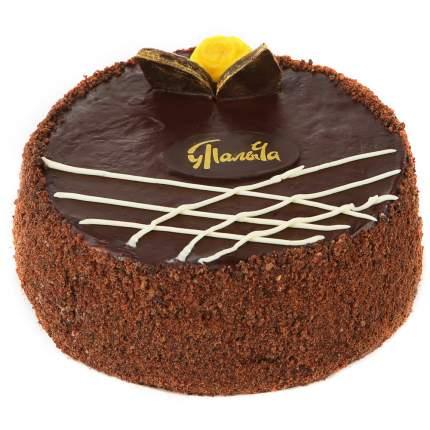 Торт у палыча прага оригинальный бисквитный 1100 г пл/уп # компания у палыча россия