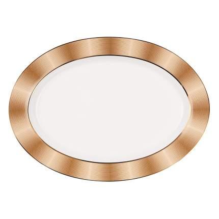 Золото сервиз столовый 27 предметов Royal Aurel (316)
