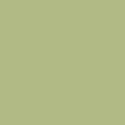 Фон бумажный FST 2,72х11 Green
