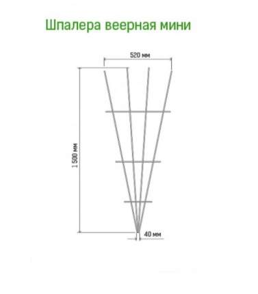 Шпалера веерная (мини) (Л)