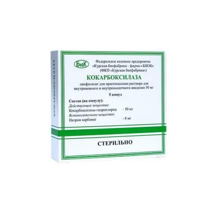 Кокарбоксилаза лиофилизат для приг. раствора для в/в и в/м введ.50 мг №5