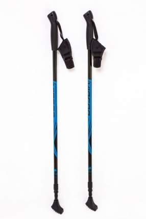 Палки для скандинавской ходьбы VINSON 1121