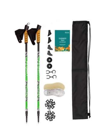 Набор для ходьбы Plus VINSON 1615