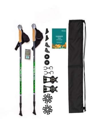 Набор для ходьбы CARBON PRO Finpole 1617