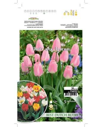 Тюльпан Лайт энд Дрими Русский огород 114152