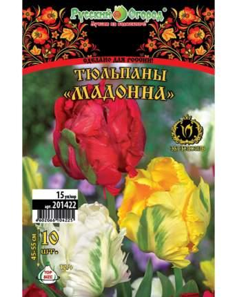 Тюльпан Мадонна Русский огород 201422