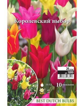 Тюльпан Королевский выбор Русский огород 1099