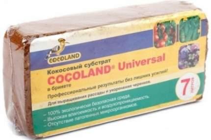 Грунт для террариума Cocoland Universal  , брикет, 7 л