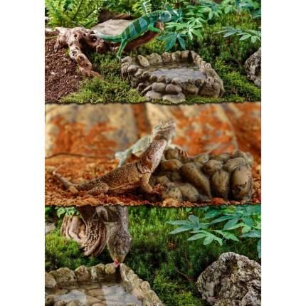 Поилка угловая для рептилий Exo Terra, пластик, Corner Water Dish Large  6x19x21 см