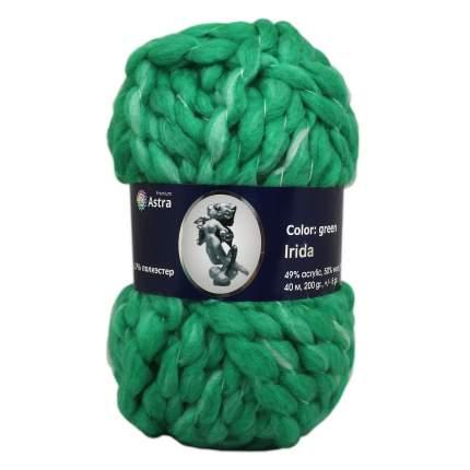 """Пряжа Астра """"Irida"""", цвет зелёный, арт. 6 (2 мотка) (количество товаров в комплекте: 2)"""