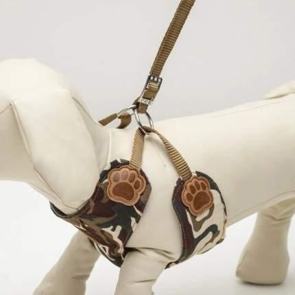 Комплект Пижон Рефлекс размер M, поводок 95 см, шлейка  20-58 см, камуфляж