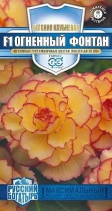 Семена цветов Гавриш Бегония Огненный фонтан F1 клубневидная 4 шт. и в пробирке
