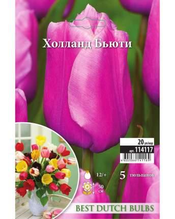 Тюльпан Холланд Бьюти Русский огород 114117