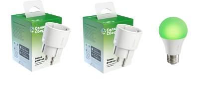 Набор Sber умные розетки 2 шт + умная лампа A60 (цоколь E27) 1 шт