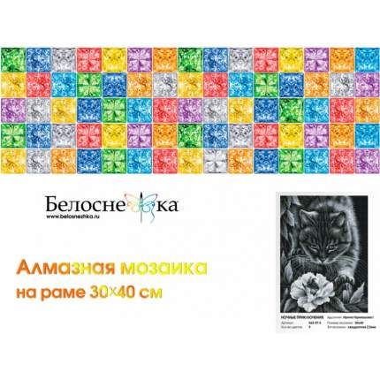 Алмазная мозаика Ночные приключения Белоснежка 562-ST-S