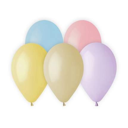 Воздушный шар АЙРИС, ассорти пастель, 12шт/упак AR708