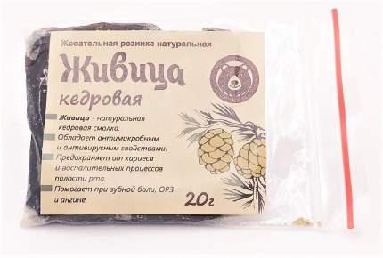 Живица кедровая (смолка жевательная) 20 гр