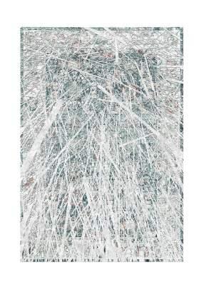 Ковер 100x150 см Pavis HDJ1399-00-100X150