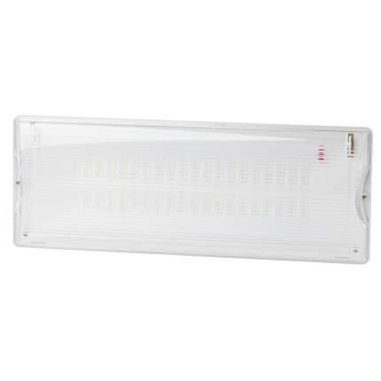Аварийный светильник ЭРА DPA-301-0-65